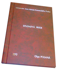 diplomova_prace.png